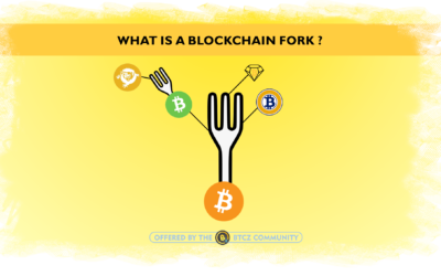 "What is a ""Fork""?"
