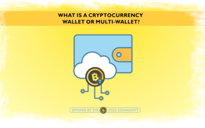 What is a cryptocurrency Wallet and Multiwallet?