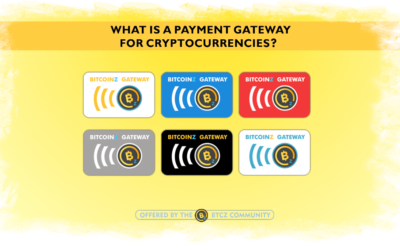 "What is a ""Payment Gateway""?"
