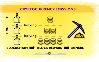 "What is a ""fair halving plan"" in crypto mining."