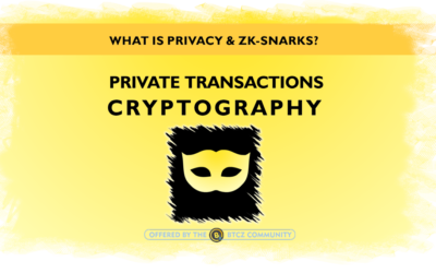 "What is ""transactions privacy"" and ""Zk-snarks""?"